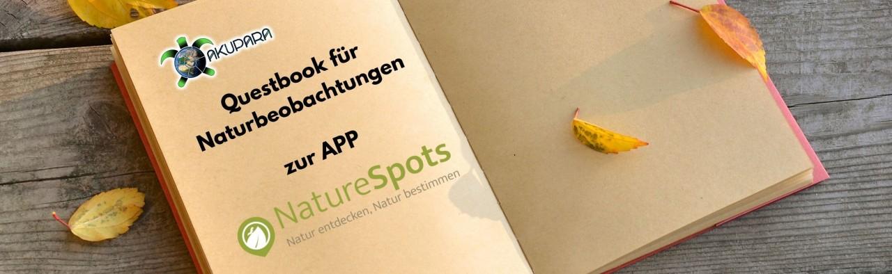 Kopie-von-Kopie-von-Questbook21