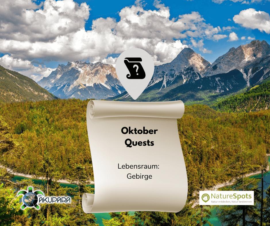 Questbook für Naturbeobachtungen - Oktober